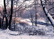 Wintry Landscape Prints - Kuz minsky park Print by Anonymous