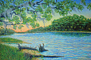 Live Oak Trees Paintings - Lagoon at Hunting Island by Dwain Ray