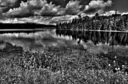 Fir Trees Photos - Lake Abanakee in the Adirondacks by David Patterson