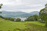 Andrew Gaylor - Lake District View