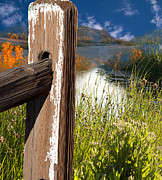 Gunter Nezhoda Metal Prints - Landscape With Fence Pole Metal Print by Gunter Nezhoda