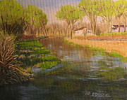 Patrick Paintings - LeTort Spring Run by Patrick ODriscoll