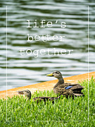 Lovers Photo Posters - Lifes better together Poster by Edward Fielding