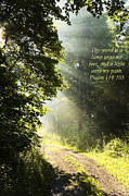 Gravel Road Photo Metal Prints - Light unto My Path Metal Print by Thomas R Fletcher