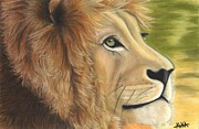 Detailed Pastels Framed Prints - Lions Dynasty Framed Print by Alika Crooks