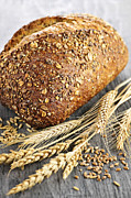 Golden Brown Framed Prints - Loaf of multigrain bread Framed Print by Elena Elisseeva