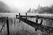 Black And White Image Framed Prints - Loch Ard early mist Framed Print by John Farnan
