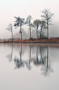 Reflection In Water Prints - Loch Ard Reflections Print by Grant Glendinning
