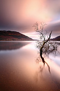 Scotland Images Prints - Loch Lomond Print by Grant Glendinning