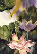 Lotus And Waterlily Paintings - Lotus by Alfred Ng