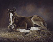 Saddle Paintings - Lucky by Ricardo Chavez-Mendez