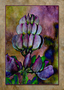 Wb Johnston Framed Prints - Lupin 3 Framed Print by WB Johnston