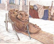 Baskets Drawings - Malta by Caryn Coville