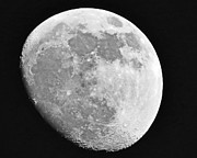 Man In The Moon Print by Tom Gari Gallery-Three-Photography