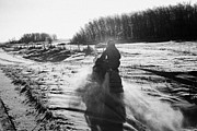 Harsh Conditions Prints - man on snowmobile crossing frozen fields in rural Forget Saskatchewan Canada Print by Joe Fox
