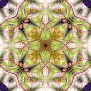 Psychedelic Metal Prints - Mandala 128 Metal Print by Terry Reynoldson