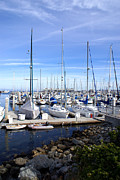 Barbara Snyder Prints - Monterey Harbor California Print by Barbara Snyder