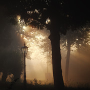 HJBH Photography - Morning Light