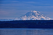 Featured On Fineart America - Mount Rainier by Sean Griffin