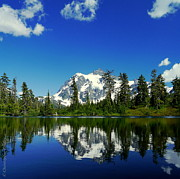 Christopher Fridley Prints - Mount Shuksan Print by Christopher Fridley