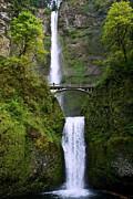 All - Multnomah Falls by Jaci Harmsen