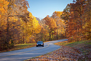 Franklin Tennessee Prints - Natchez Trace Print by Brian Jannsen
