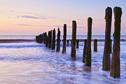 East Prints - Old Jetty Posts at Sunrise Print by Colin and Linda McKie