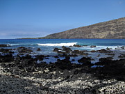 Hawaiian Pictures Prints - On The Rocks Print by Athala Carole Bruckner