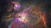 Nebulas Photos - Orion Nebula by Sebastian Musial
