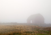 Red Barn Metal Prints - Out of the Fog Metal Print by Mike  Dawson