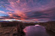 Eastern Sierra Prints - Owens River Sunset Print by Cat Connor