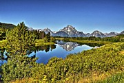 Sweeping Posters - Oxbow Bend Reflection Poster by David Burks