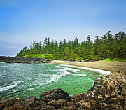 Green Trees Framed Prints - Pacific ocean coast on Vancouver Island Framed Print by Elena Elisseeva