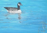 Framed Bird Prints Painting Prints - Paddling away Print by Gilles Delage