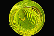 Frond Prints - Palm Abstract Print by Cheryl Young