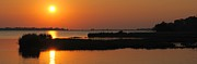 Waterway Birds Prints - Panoramic Sunset Print by Robert Harmon