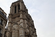 Gothic Photo Posters - Paris France - Notre Dame de Paris - 011310 Poster by DC Photographer