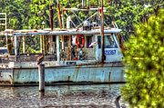 Shrimp Boat Prints - Pelican and fishing boat Print by Michael Thomas