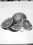 Featured Drawings - Pencil Art by Asif Rehman