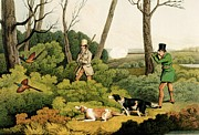 Setters Prints - Pheasant Shooting Print by Henry Thomas Alken