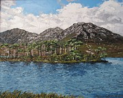 Connemara Paintings - Pine Island Derryclare lough Connemara Ireland by Diana Shephard