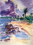 Grande Painting Framed Prints - Playa Grande Framed Print by Barbara Richert