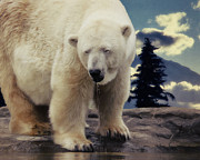 Wild Animals Mixed Media Posters - Polar Bear Poster by Angela Doelling AD DESIGN Photo and PhotoArt