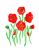Watercolor Card Prints - Poppies Print by Irina Sztukowski