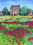 Poppies Field Paintings - Poppies by Sherri Crabtree
