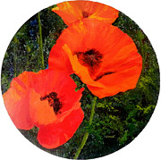 Jennifer  Blenkinsopp - Poppies to remember