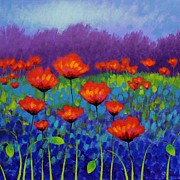 Poppies Field Painting Originals - Poppy Meadow by John  Nolan
