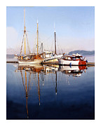 Boats At Dock Prints - Port Orchard Marina Print by Jack Pumphrey