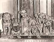 Staircase Drawings - Puppies In The Hallway by Omoro Rahim