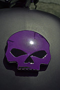 Chrome Skull Framed Prints - Purple Haze Framed Print by Bill Owen